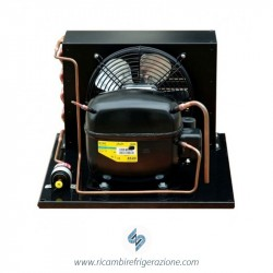Unità condensatrice ad aria compressore SC12CL a valvola